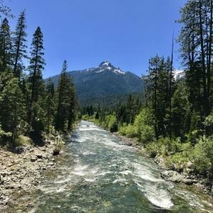 Feeling Groovy at Eagle Creek Ranch